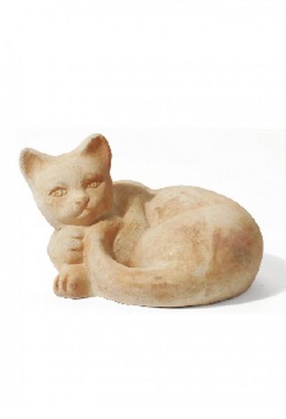 Katze Clara - Rossini Terracotta