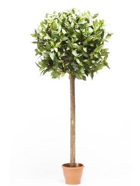 Laurus nobillis Kugel - Kunstpflanze 120 cm