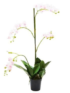 Phalaenopsis 75 cm Rosa - Orchideen Kunstpflanze