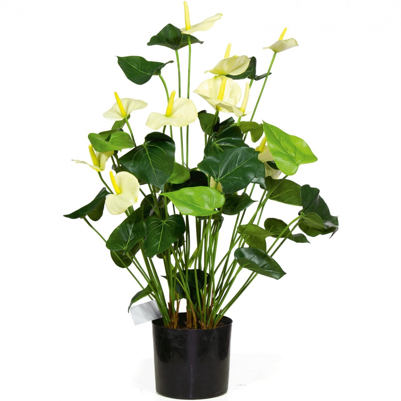 Anthurie / Anthurium - Kunstpflanze
