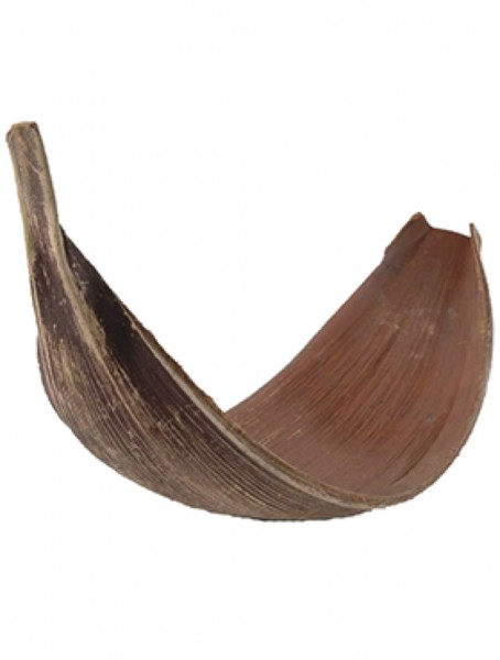 Kokosnuss Blatt - Dekoholz