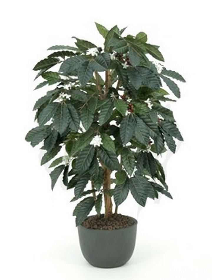 Coffea arabica | Kaffeestrauch Kunstpflanze - Blühend