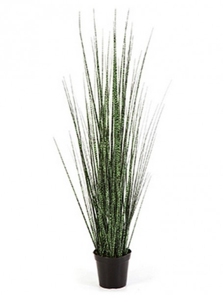 Zebra gracilis grass - Kunstgras