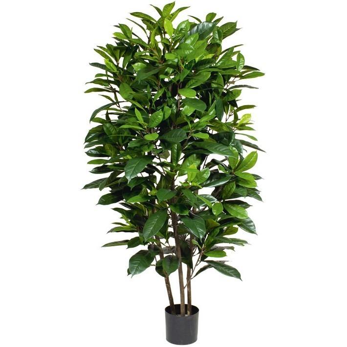 Ficus Casthipula 160 cm - Kunstpflanze