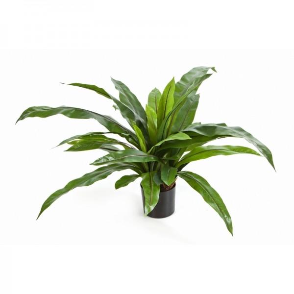 Asplenium Farn - Kunstpflanze