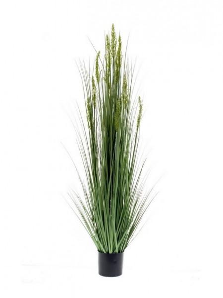 Grain Kunstgras