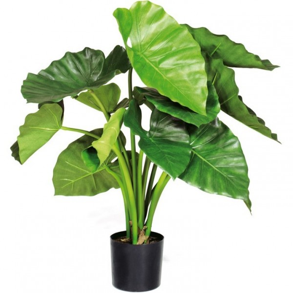 Alocasia calidora | Kunstpflanze im Topf