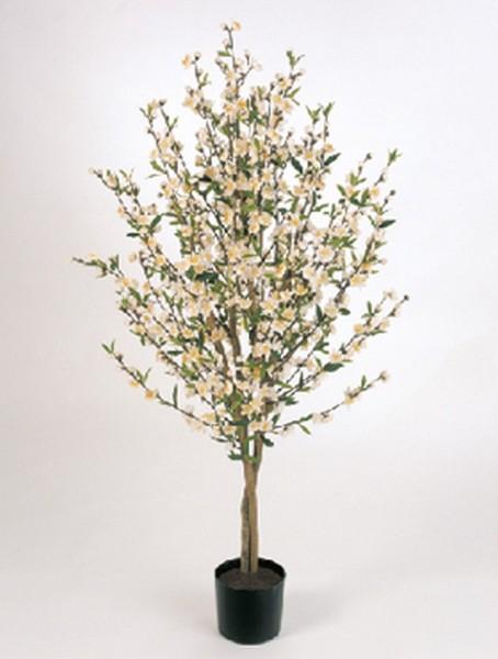 Cherry blossom - Kirschkunstbaum creamweiß