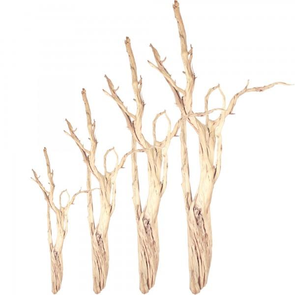 Ghostwood sandgestrahlt | Treibholz