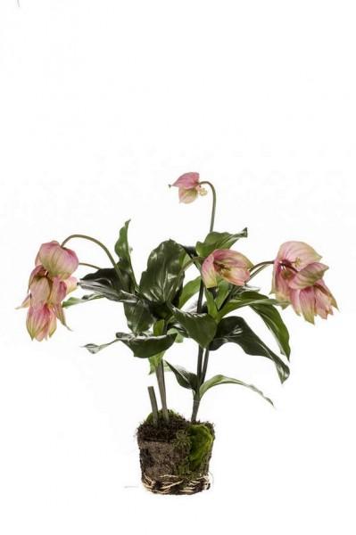 Medinilla soiled 60cm - Kunstpflanze