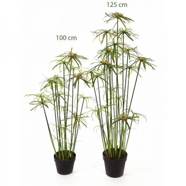 Papyrus Alternifolius - Kunstpflanze