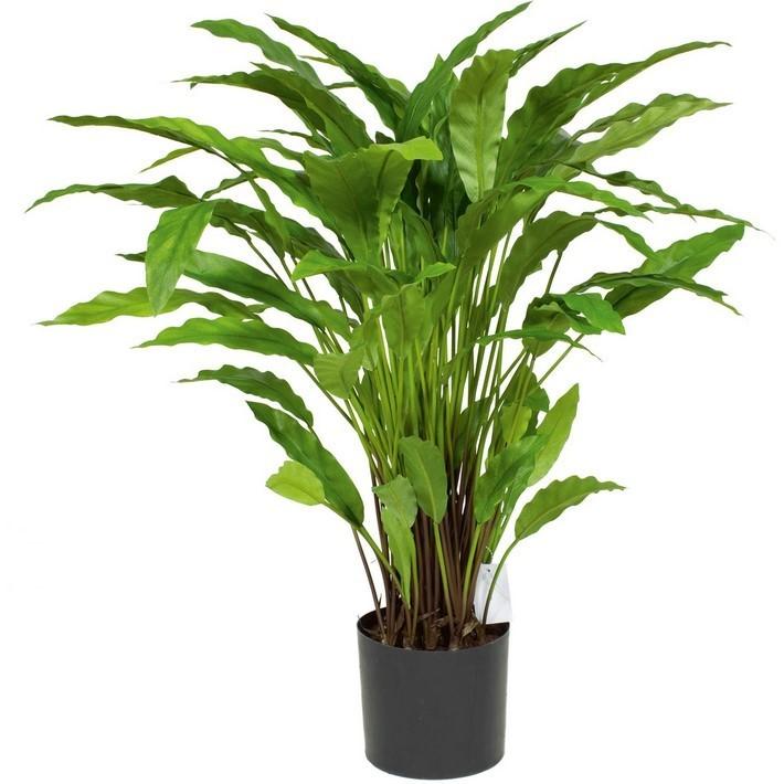 Calathea Kunstpflanze 85 cm
