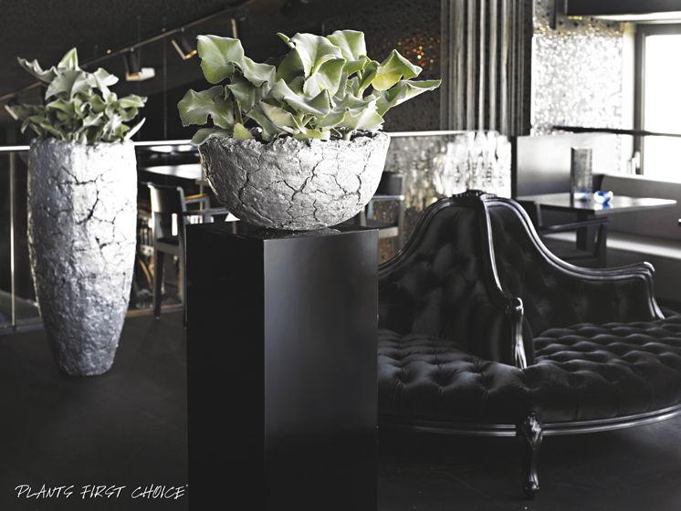 lava-bowl-vase-stimmungsbild