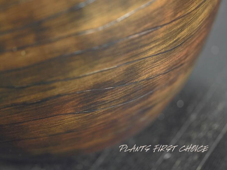 wood-design-pflanzkuebel-detail