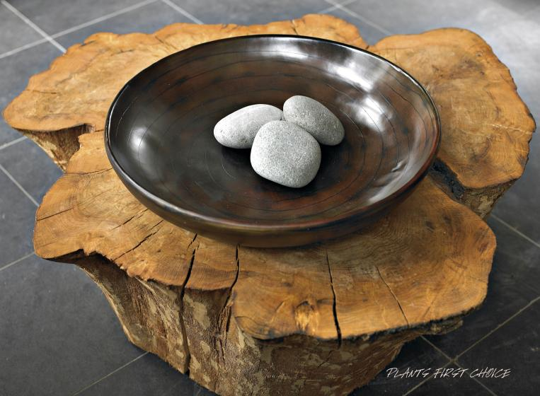 wood-design-schale-beispiel