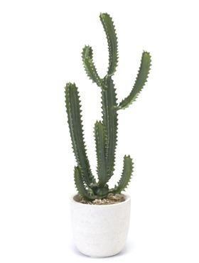 Euphorbia 90 cm - Kunstpflanze
