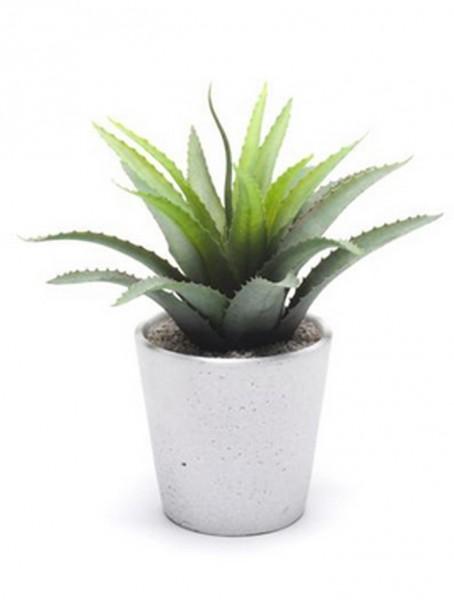 Agave 14 cm l Kunstpflanze im weissen Topf