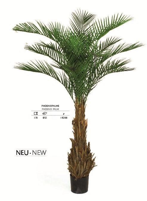 Phoenix Palme 170 cm | Kunstpalme