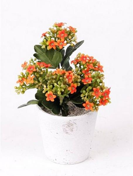 Kalanchoe orange 8 cm | Kunstpflanze im Topf