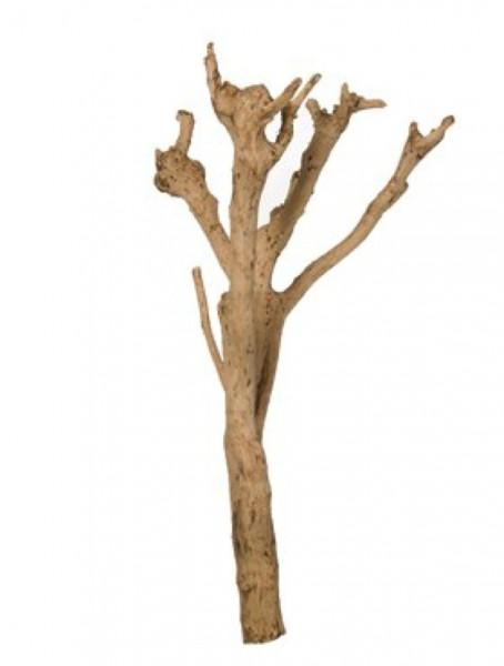 Mangrove natural - Dekoholz