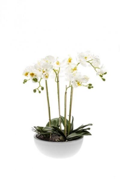 Phalaenopsis Kunstpflanze 60 cm in weißer Schale