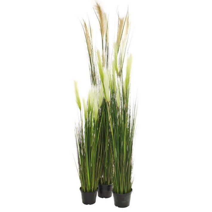 Rohrkolbengras | Kunstgraspflanze