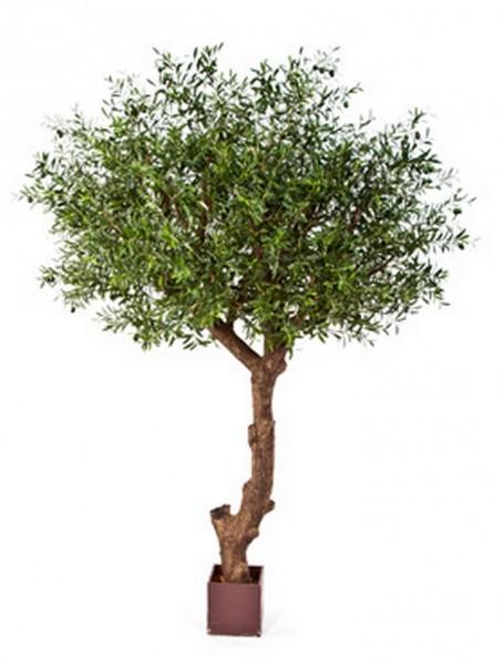 Natural Poly Oliven Kunstbaum 270 cm