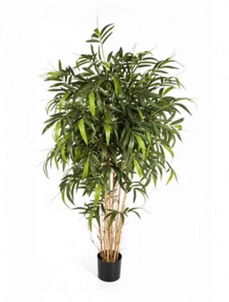 New natural bamboo - Kunstbambus