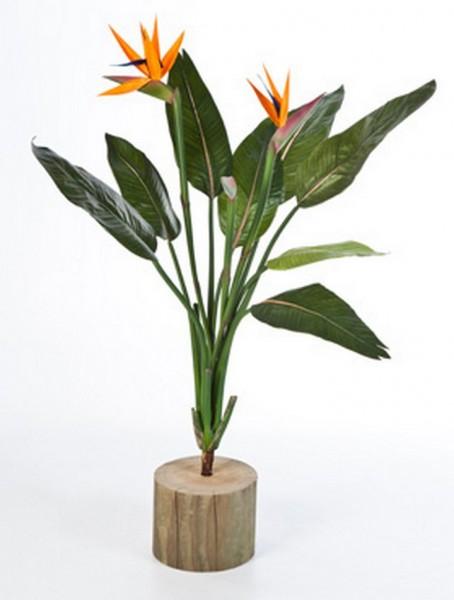 Strelitzia - Strelizien Kunstpflanzenstiel