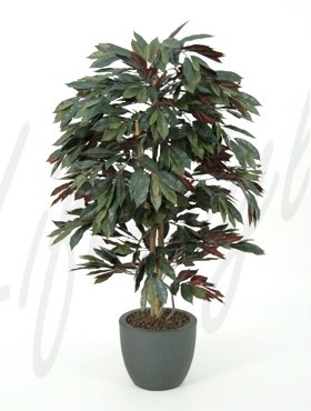 Capensia 150 cm - Kunstpflanze Roter Ficus