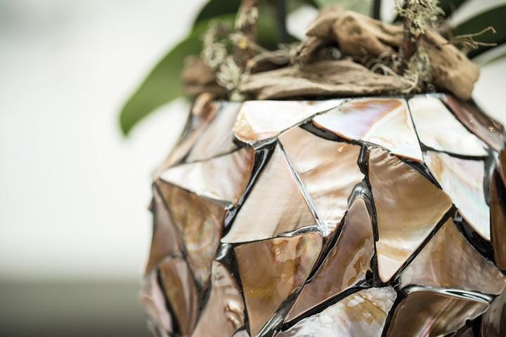 coastline-perlmutt-orchideentopf-brown-braun-stimmungsbild