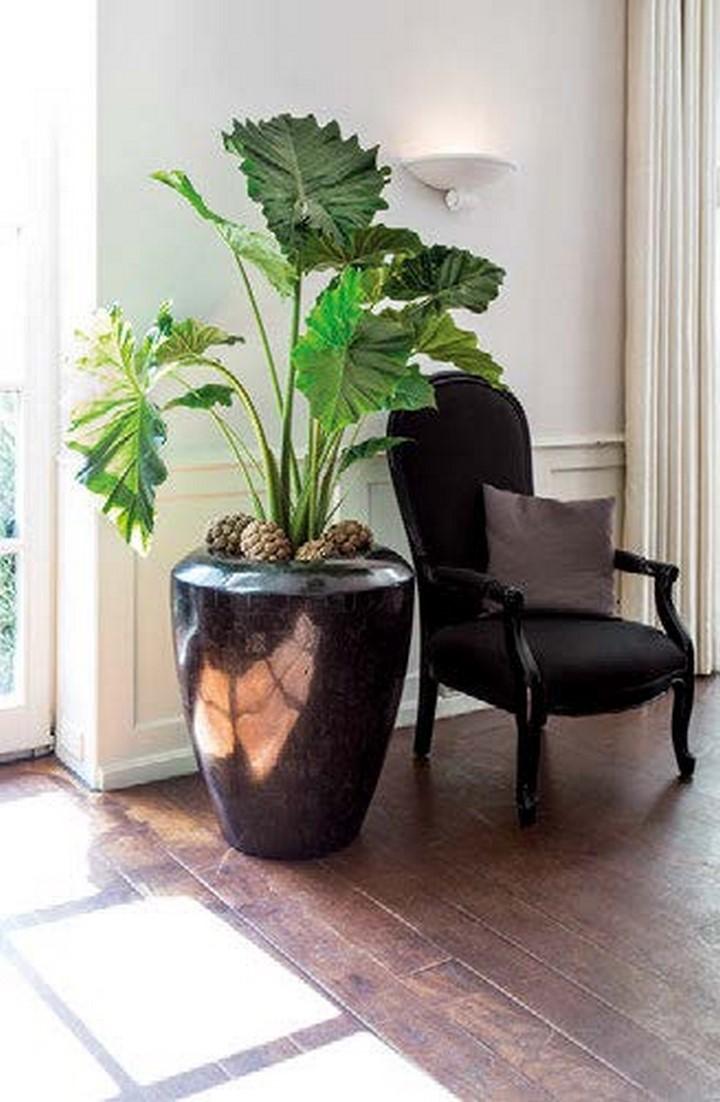 fleurami-geo-pflanzschale-crown-black-stimmungsbild