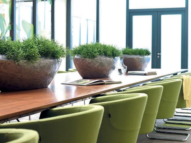 fleurami-loft-pflanzkubel-schale-stimmungsbild