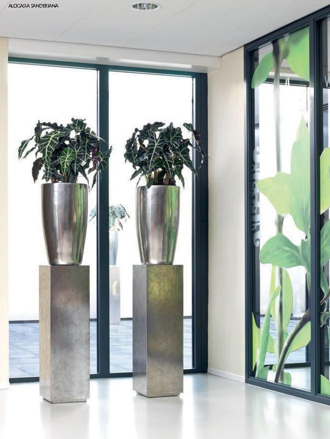 fleurami-pandora-silber-pflanzvase-stimmungsbild