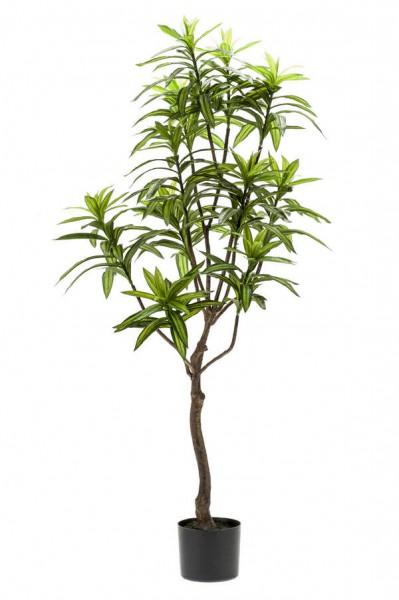 Dracaena Drachenbaum Kunstbaum