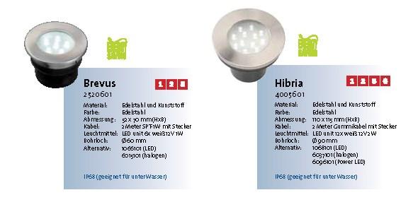 brevus-hibiria