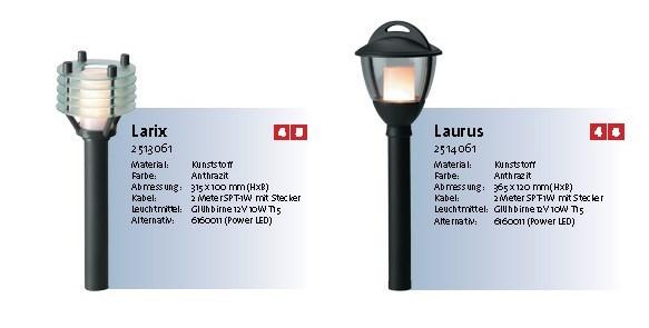 larix-laurus