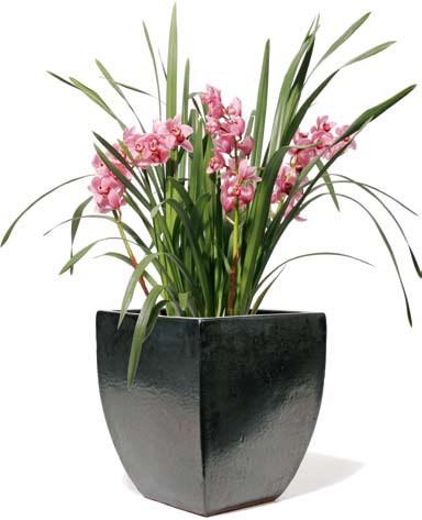 Vaso-kermik-kubel-Calice-Graphit-Stimmungsbild