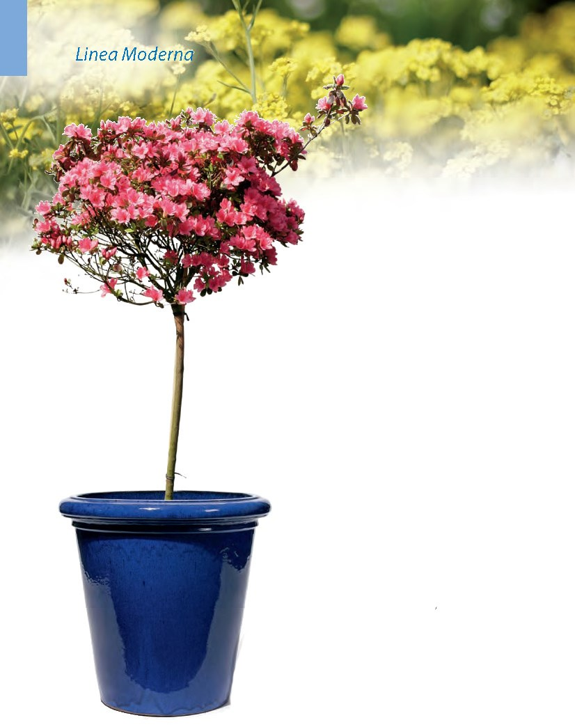 konigsblau-keramik-kubel-stimmungsbild
