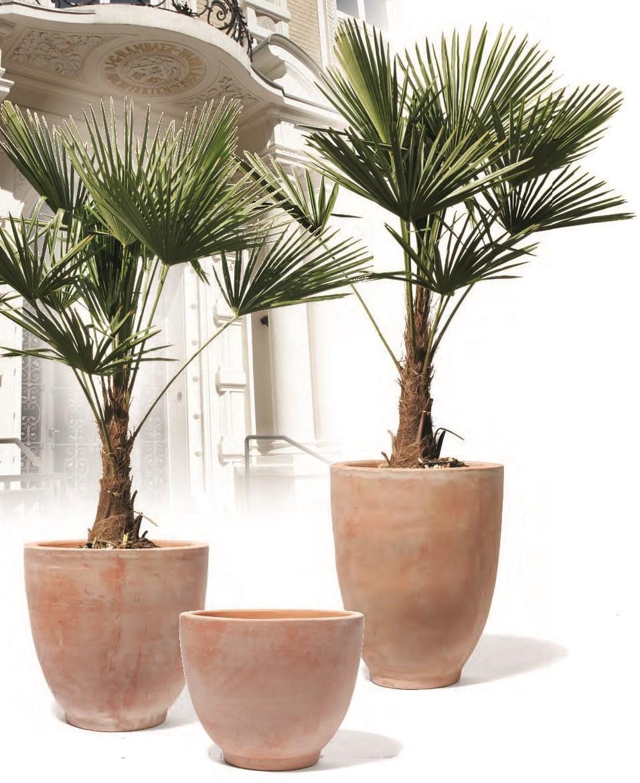 kirschke-brunello-rossini-keramik-pflanzkubel-stimmungsbild
