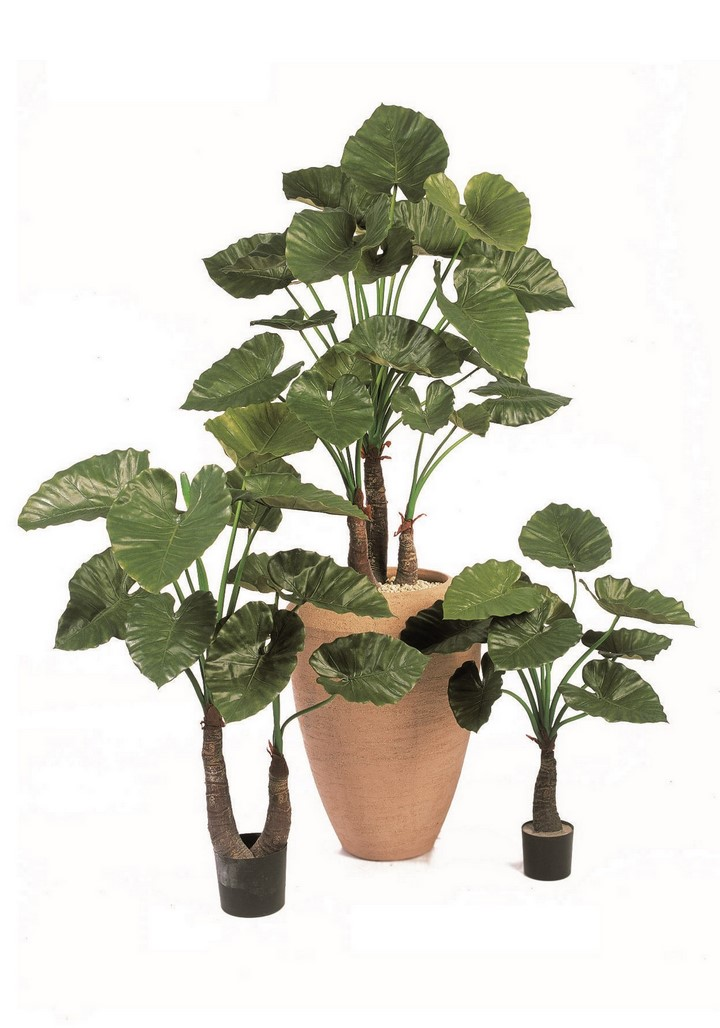 alocaisa-calidora-kunstpflanze-stimmungsbild