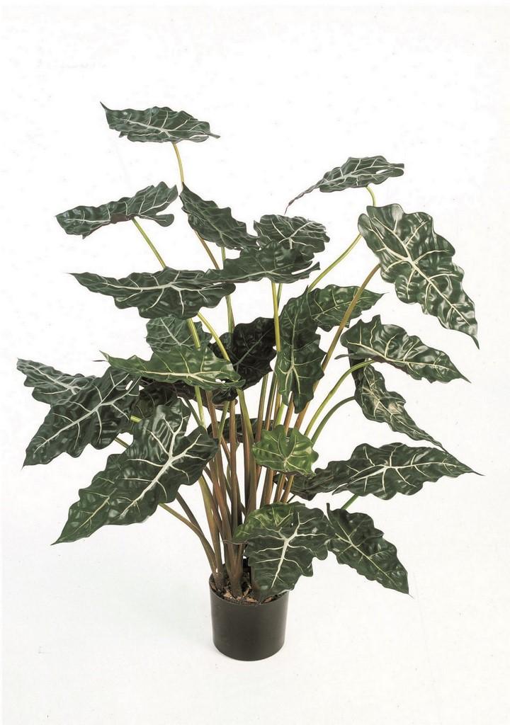 kunstpflanzen/alocaisa-poly--kunstpflanze-stimmungsbild
