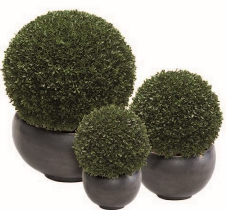 kunstpflanzen/boxwood-ball-kunstpflanze-stimmungsbild