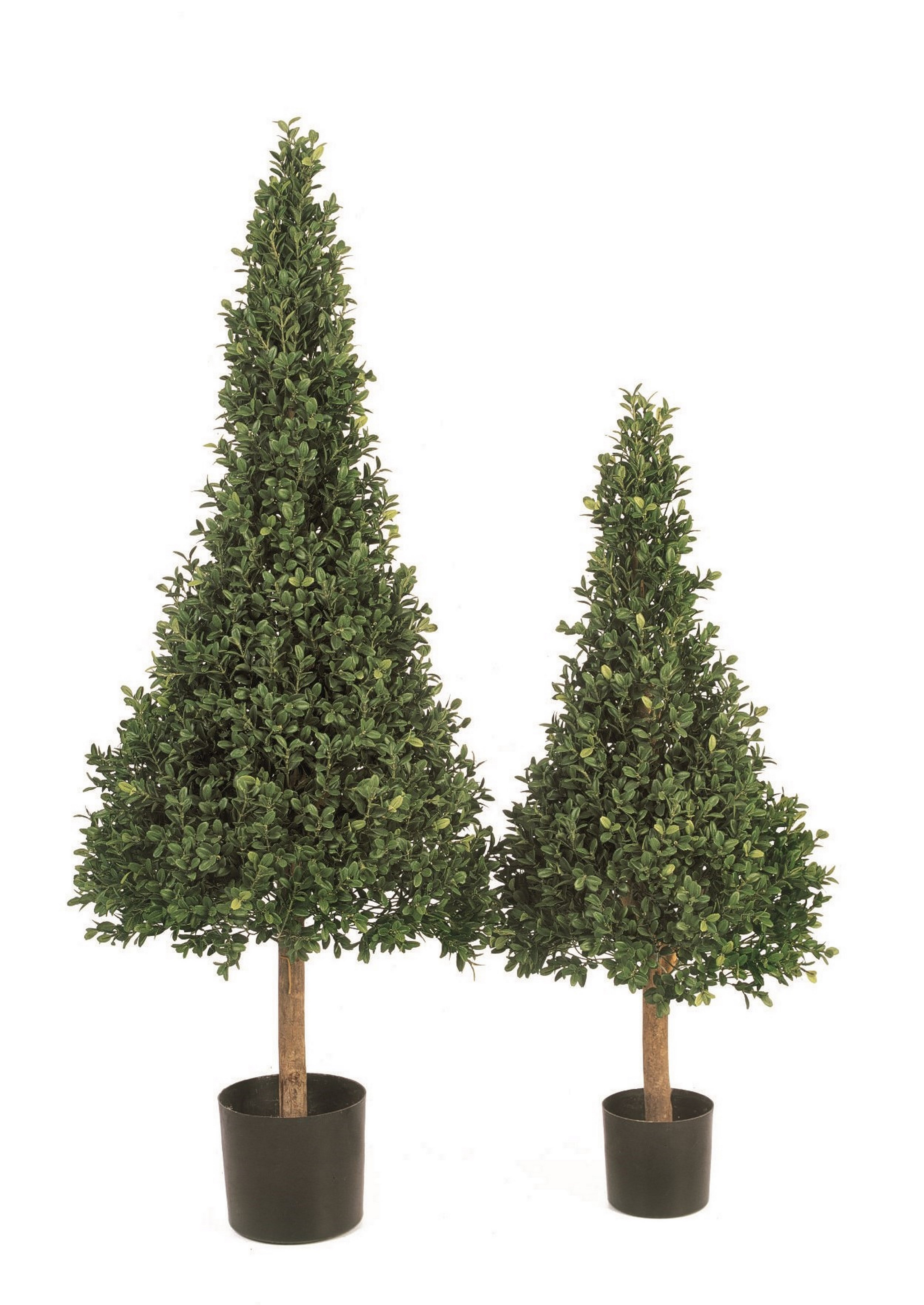 buxus pyramide buchsbaum kunstpflanze im topf palmenmarkt. Black Bedroom Furniture Sets. Home Design Ideas
