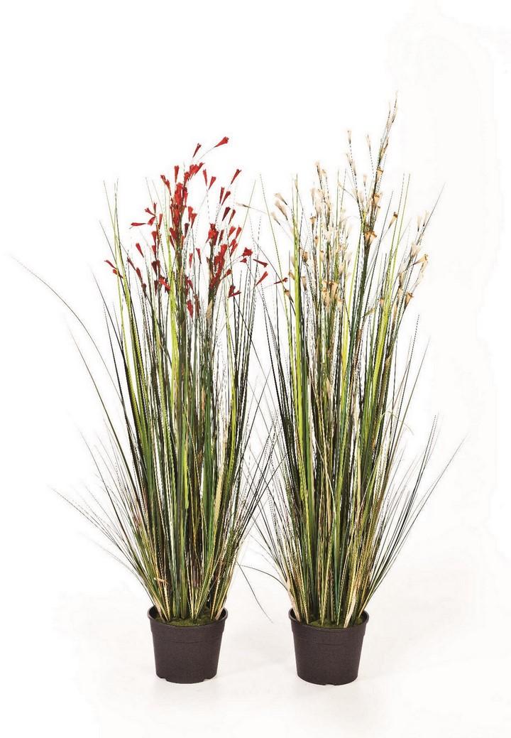 coral-grass-kunstpflanze-stimmungsbild-720.jpg