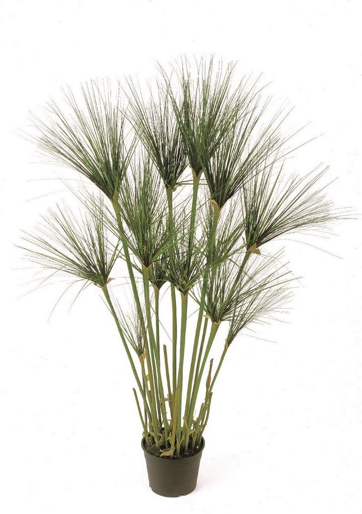 paypyrus-cyperus-kunstpflanze-stimmungsbild