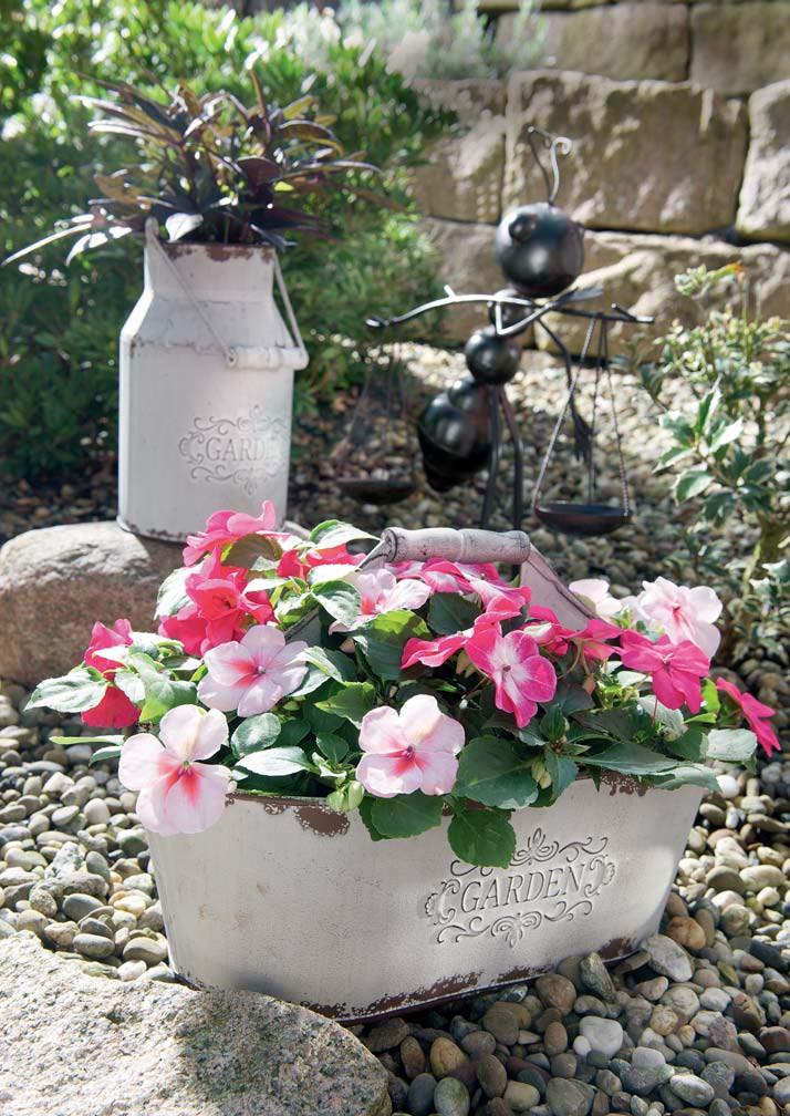 Deko-Garden-nostalgische-Metall-Pflanzschale-weiss-Stimmungsbild