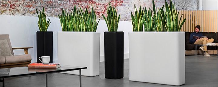 otium raumtrenner pflanzgef 90 x 27 cm h he 80 cm terrapalme heim und gartenshop. Black Bedroom Furniture Sets. Home Design Ideas