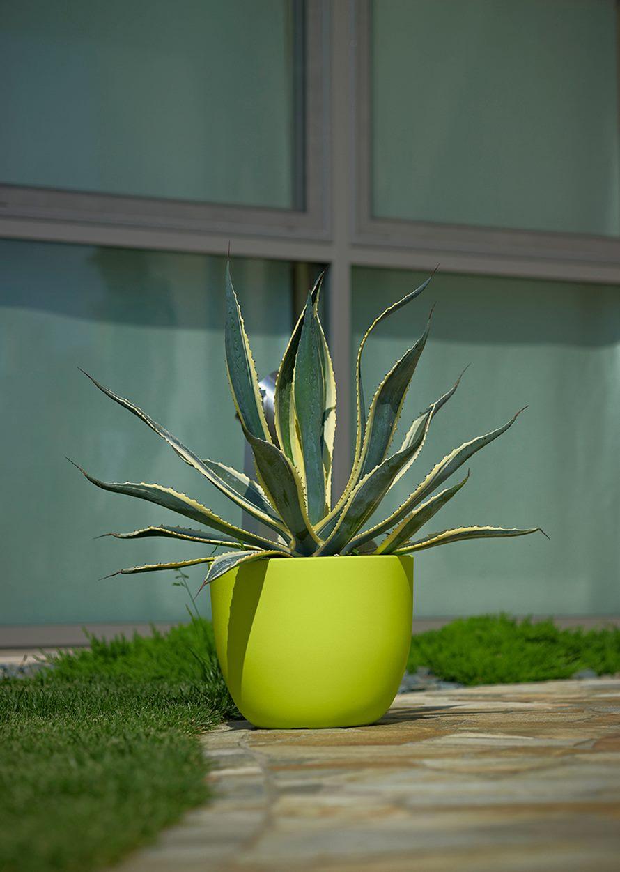 agave-alba-e3-etria-acidgreen-pflanzkuebel-stimmungsbild