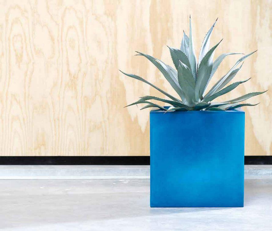 agave-nk-fiberglas-square-blue-stimmungsbild